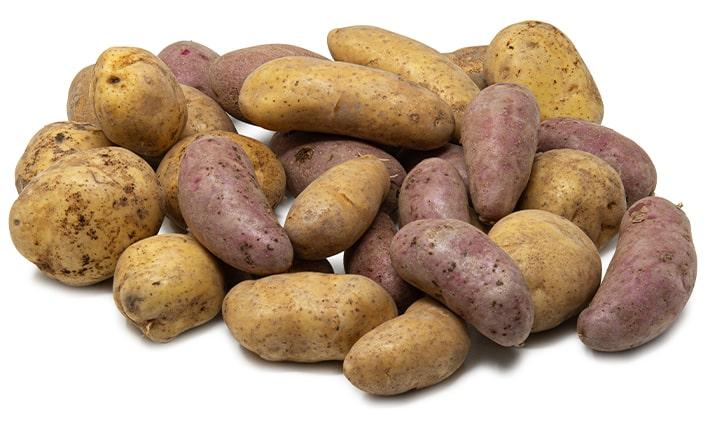 kartoffeln-ellenberg